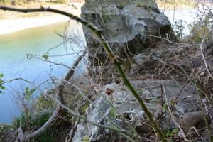 宮川と湧水池「姫の鬢水入れ」付近