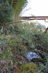湧水池「姫の鬢水入れ」付近から望む久具都比売橋(宮川)