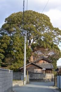 宇須乃野神社(豊受大神宮摂社)(御薗町高向)