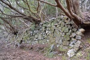 崩れかけた石垣(宇治岳道)