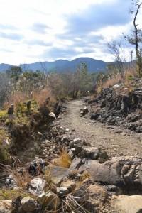 篤志家の手により整備されている山道(宇治岳道)