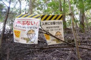 宇治祖霊殿付近〜五本松神社の山道(参道)