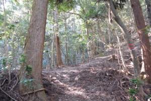 宇治祖霊殿付近〜五本松神社の山道(参道)の分岐