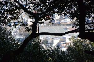 宇治祖霊殿と修養団駐車場への分岐〜五本松神社の山道(参道)