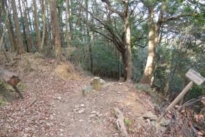 五本松神社〜宇治祖霊殿と修養団駐車場の分岐への山道