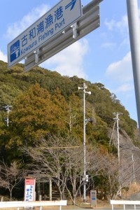 「古和浦漁港」の案内板(国道260号)
