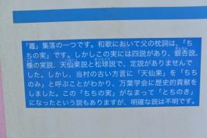 栃木竃の説明(南伊勢町栃木竃)