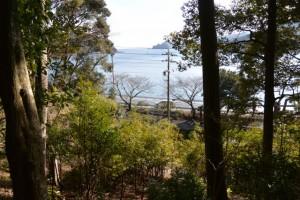 金網山西方寺(奈津観音)裏山の散策路から望む神前湾