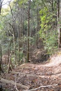 金網山西方寺(奈津観音)裏山の散策路
