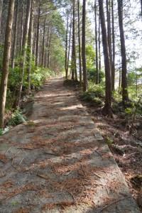 山田寺から伊勢自動車道の先、左方向にある急なコンクリート舗装の坂道