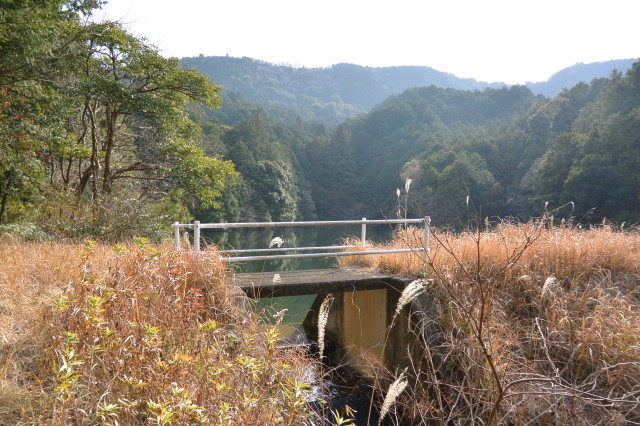 山田寺から伊勢自動車道の先、左方向にあるため池