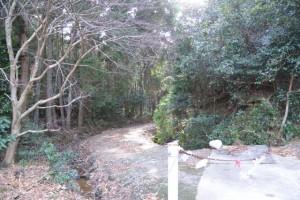 山田寺から伊勢自動車道の先、直進方向の林道