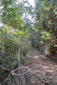 山田寺から伊勢自動車道の先、直進方向にある林道から山道へ?