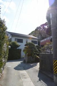 会所から高向の札場(1)へ向かう途中、振り返って望む宇須乃野神社の社叢
