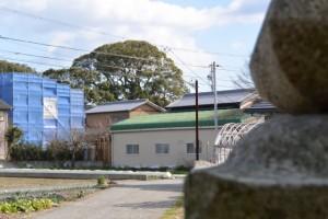 高向大社付近から望む宇須乃野神社の社叢(御薗町高向)
