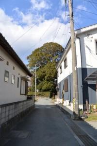 宇須乃野神社(豊受大神宮摂社)付近
