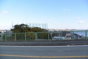 一色大橋(勢田川)から望む御食神社の社叢
