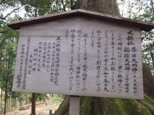 水屋の大楠、大楠社の説明板(水屋神社)