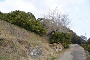 五ヶ所浅間山の参道(山道)