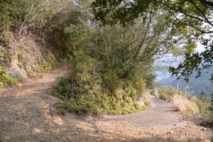五ヶ所浅間山の参道(山道)、行き止まりの確認に(右へ)