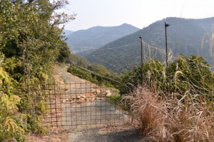 五ヶ所浅間山の参道(山道)、鳥獣被害防止のため舗装路は行き止まり
