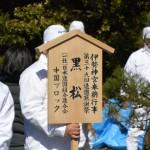 一般社団法人日本造園組合連合会によるクロマツ奉納植樹(内宮)