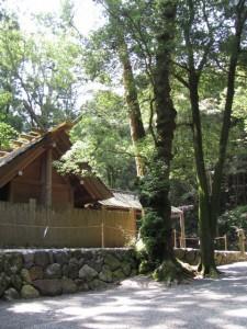 風宮の石垣に隠れていたハート型の石(2011年7月2日)