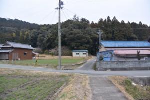 白山比咩神社の参道(津市白山町山田野)