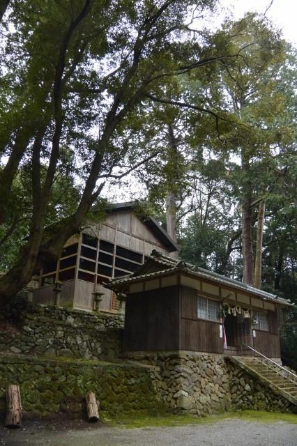 本殿と拝殿(白山比咩神社、津市白山町山田野)