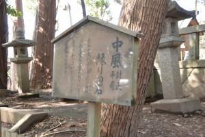 中風封止平癒縁りの石(有田神社)