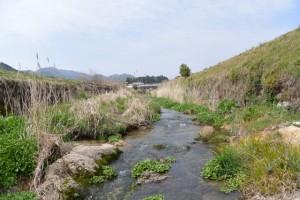 片野八柱神社(多気町片野の裏手を流れる川