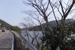伊勢道路(県道32号)、神路湖付近