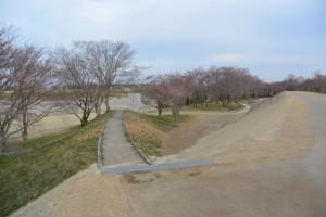 改修工事が完了した宮川堤から望む周防堤