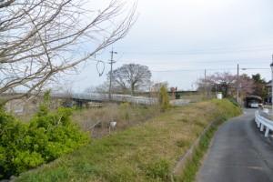 宮川堤から桜の渡し場跡へ