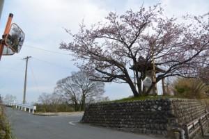 旧跡 宮川・桜の渡し(下の渡し)の説明板付近