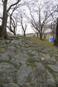 改修工事が完了した宮川堤から延びる駿河堤