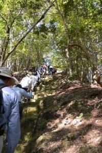 霊符山大陽寺、奥の院への参道(大台町栗谷)