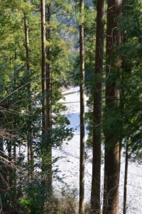 湯谷峠〜分岐点(中木屋橋)の途中から望む昼食地点
