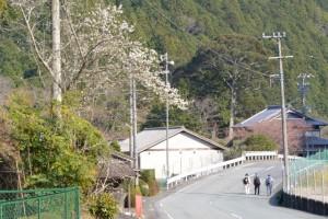 分岐点(中木屋橋)〜大陽寺