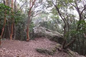 バクチ岩、五知道(磯部岳道)