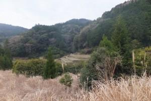 五知道(磯部岳道)の登り口から近鉄五知駅への途中での風景