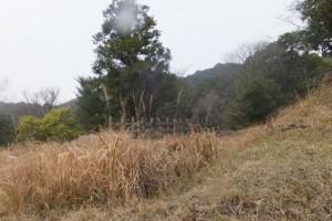 国道167号、五知駅〜五知峠 の途中で見つけた・・