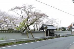 国史跡 旧豊宮崎文庫とオヤネザクラ