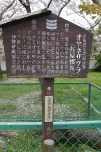 オヤネザクラの説明板(旧豊宮崎文庫)