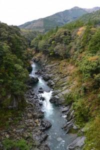 菅合大橋から望む大内山川の上流側