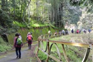 大滝峡のサイクリングロード