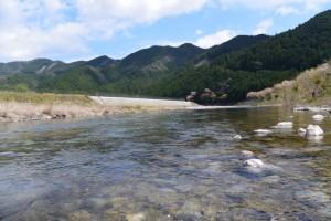 大内山川(岩船橋付近)
