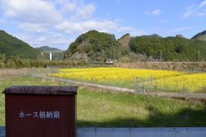 熊野古道伊勢路(JR紀勢本線 一の谷踏切~坂津橋)