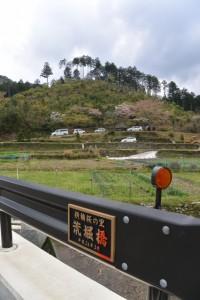横輪桜の里 荒堀橋から望む宮山方向(伊勢市横輪町)