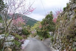 石垣ほか(伊勢市横輪町)
